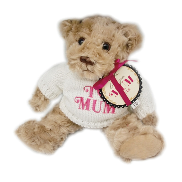 Plush teddy bear with knitte...